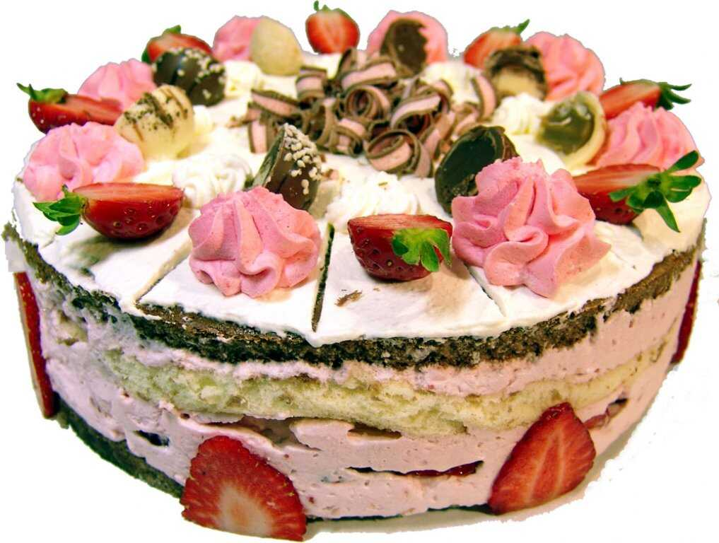 Заказ торта дешево пенза
