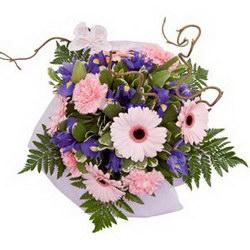 «Звездочка моя»Прекрасный букет для молодой девушки. Нежный и оригинальный букет из розовых гербер и синих ирисов. Доставка в Мингрельскую.