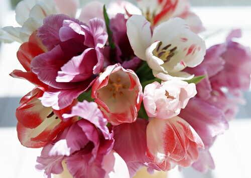 С весной, милая!