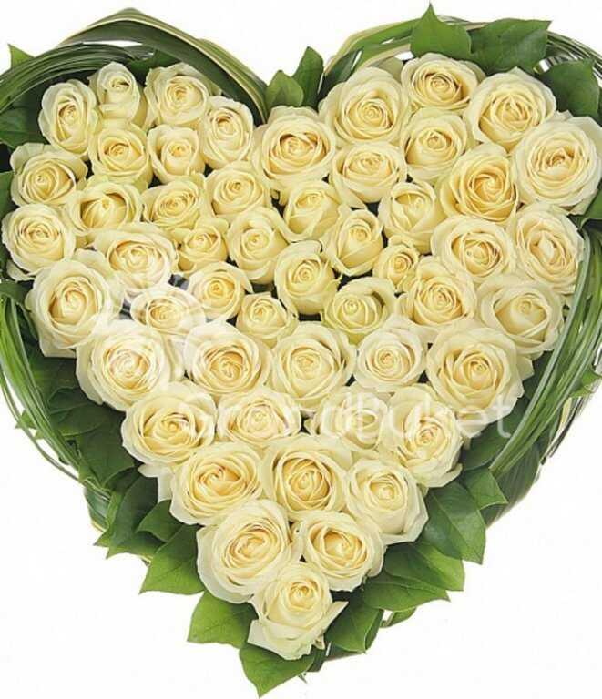 того, сердце из белых роз фото вместе супругой натальей