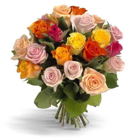 Первоклассные цветные розы