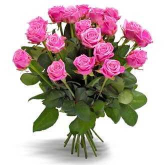 Первоклассные розовые розы