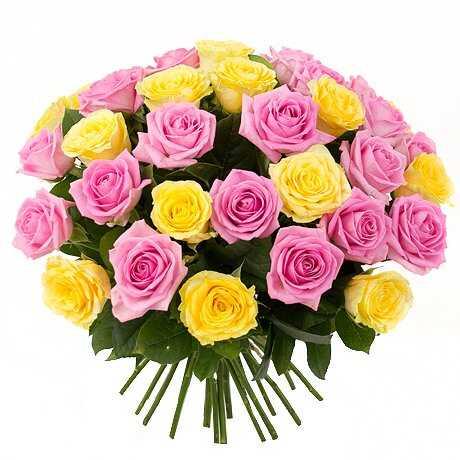 Первоклассный дуэт роз