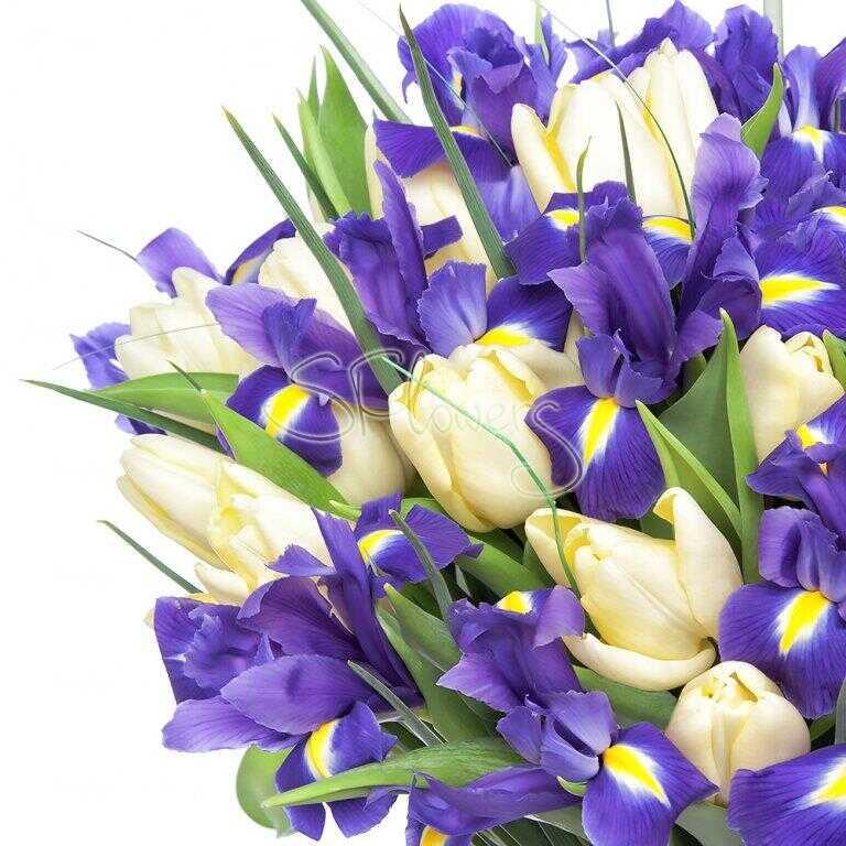 Для, открытка с днем рождения с ирисами и тюльпанами